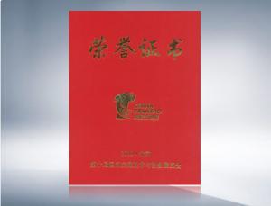 2010年道路交通展证书