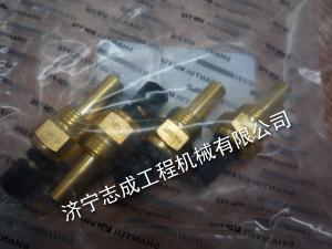 溫度傳感器P1130531